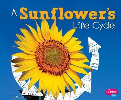 A Sunflower's Life Cycle by Mary R. Dunn