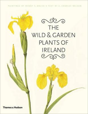 Wild and Garden Plants of Ireland by Wendy F. Walsh