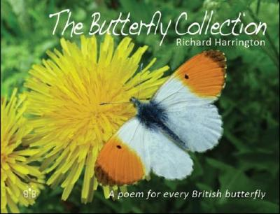 Butterfly Collection by Richard Harrington