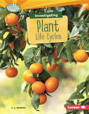 Investigating Plant Life Cycles book