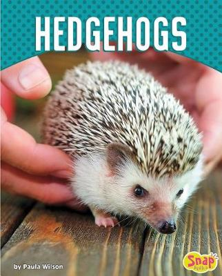 Hedgehogs by Paula M. Wilson