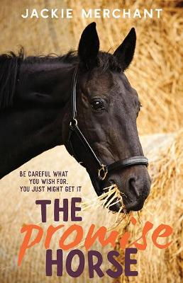 Promise Horse book