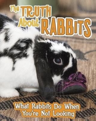 The Truth about Rabbits by Mary Colson