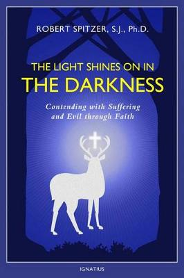 The Light Shines on in the Darkness by Robert J Spitzer