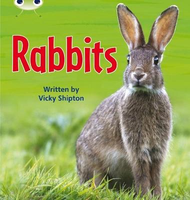 Bug Club Phonics Bug Non-fiction Set 27 Rabbits by Vicky Shipton