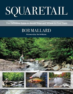 Squaretail: The Definitive Guide to Brook Trout and Where to Find Them by Bob Mallard