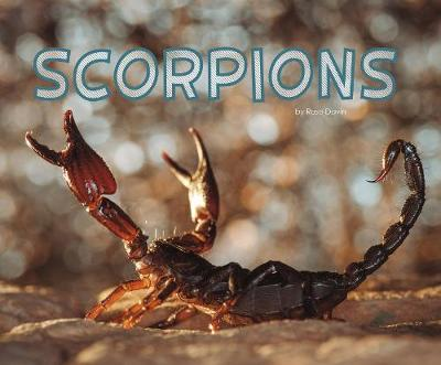 Scorpions by Rose Davin