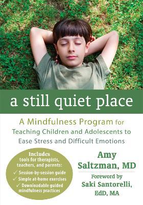A Still Quiet Place by Amy Saltzman