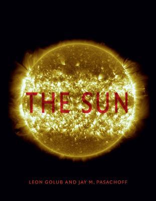 The Sun by Leon Golub