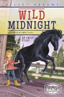 Wild Midnight: An Emily Story book