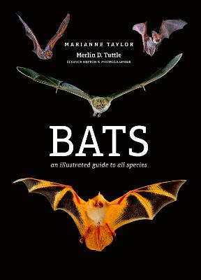 Bats: An illustrated guide to all species by Marianne Taylor