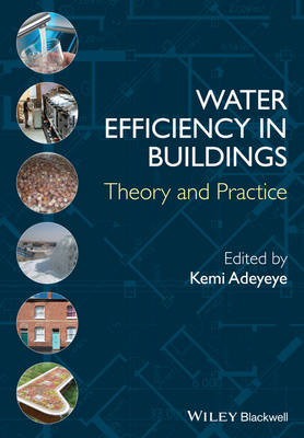 Water Efficiency in Buildings - Theory and        Practice by Kemi Adeyeye