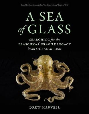 A A Sea of Glass: Searching for the Blaschkas' Fragile Legacy in an Ocean at Risk by Drew Harvell