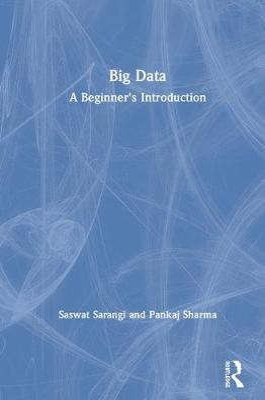 Big Data: A Beginner's Introduction book