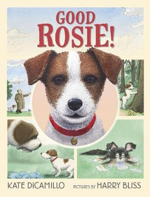 Good Rosie! book