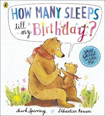 How Many Sleeps till my Birthday? by Mark Sperring