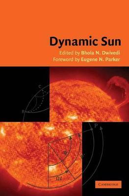 Dynamic Sun by B.N. Dwivedi