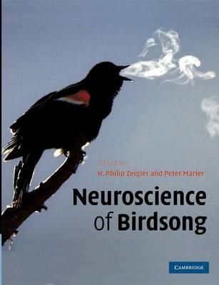 Neuroscience of Birdsong by Peter Marler