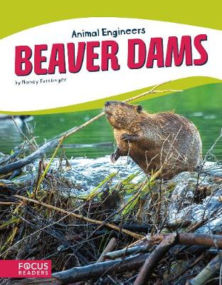 Beaver Dams by Nancy Furstinger