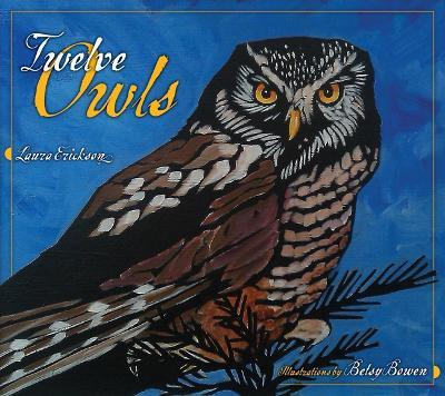 Twelve Owls book