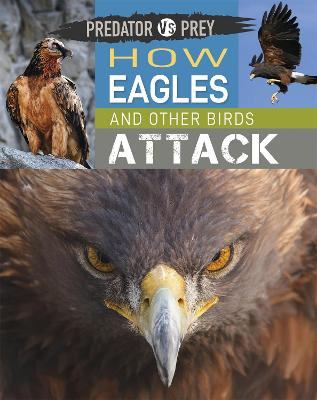 Predator vs Prey: How Eagles and other Birds Attack by Tim Harris