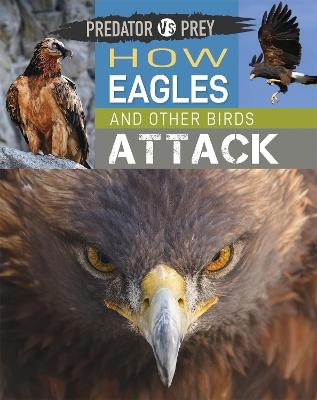 Predator vs Prey: How Eagles and other Birds Attack book