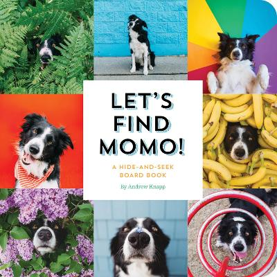 Let's Find Momo!: A Hide-and-Seek Board Book by Andrew Knapp