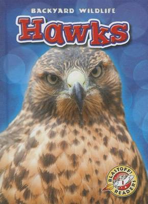Hawks by Kari Schuetz
