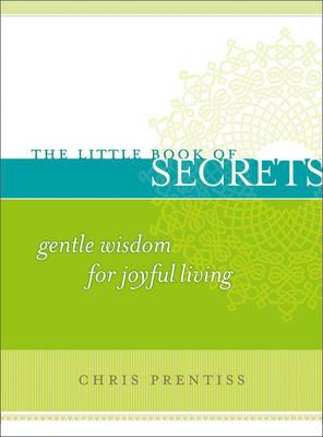 Little Book of Secrets book