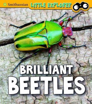 Brilliant Beetles by Melissa Higgins