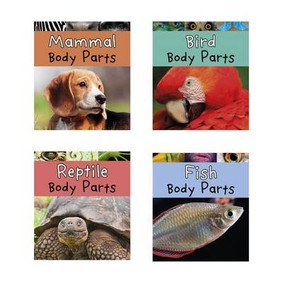 Animal Body Parts by Clare Lewis