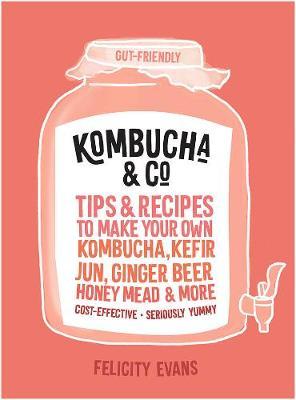 Kombucha & Co: Tips and Recipes to Make Your Own Kombucha, Kefir, Jun, Ginger Beer, Honey Mead and More book