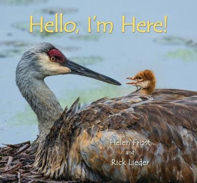 Hello, I'm Here! book