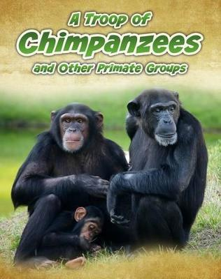 A Troop of Chimpanzees by Richard Spilsbury