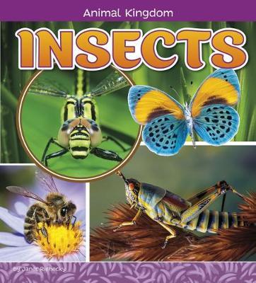 Insects by Janet Riehecky