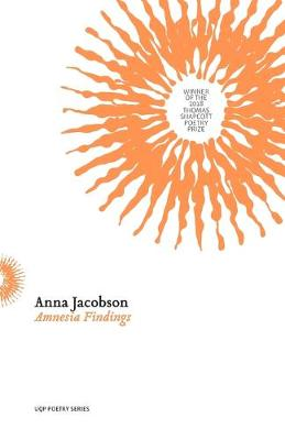 Amnesia Findings book