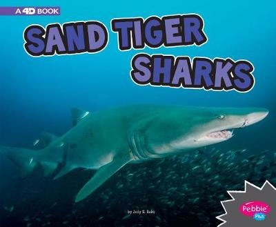 Sand Tiger Sharks by Jody S. Rake