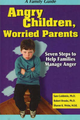 Angry Children, Worried Parents by Goldstein