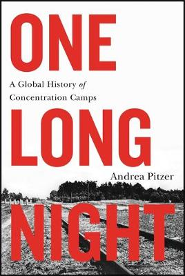 One Long Night by Andrea Pitzer