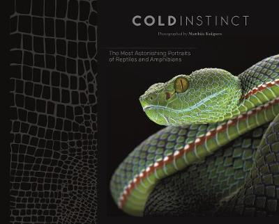 Cold Instinct by Matthijs Kuijpers