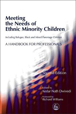 Meeting the Needs of Ethnic Minority Children - Including Refugee, Black and Mixed Parentage Children book