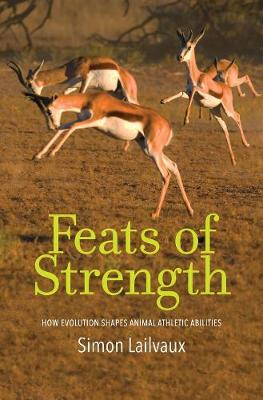 Feats of Strength by Simon Lailvaux