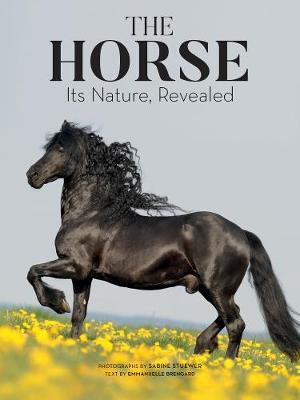 The Horse by Emmanuelle Brengard