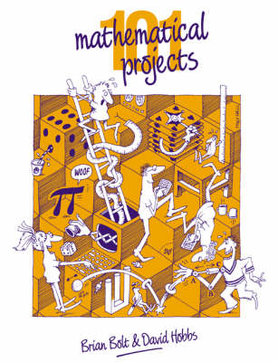 101 Mathematical Projects by Brian Bolt
