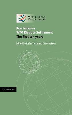 Key Issues in WTO Dispute Settlement book