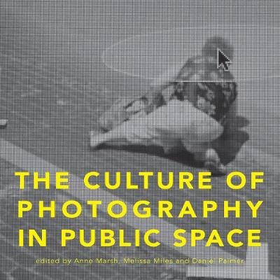 The Culture of Photography in Public Space by Anne C. Marsh