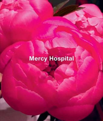 Ida Applebroog - Mercy Hospital by Jo Applin