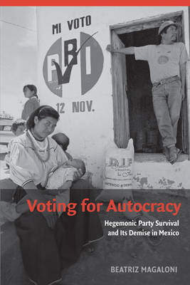 Voting for Autocracy book