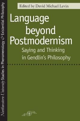 Language Beyond Postmodernism by David Michael Levin