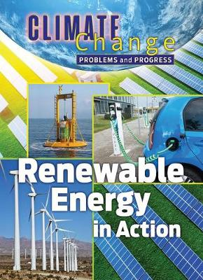 Renewable Energy in Action: Problems and Progress by James Shoals